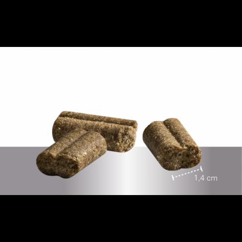 """Sausas maistas vyresnio amžiaus šunims su ėriena """"Prins ProCare lamb&rice senior"""", 15kg"""