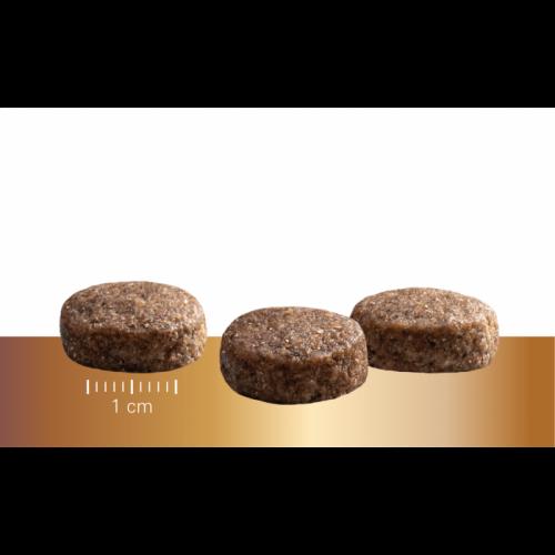 """Sausas maistas vyresnio amžiaus šunims """"Prins Protection Croque SENIOR Fit"""", 10kg"""